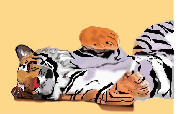 Tiger Backgrounds Clipart png free, Tiger Backgrounds transparent png