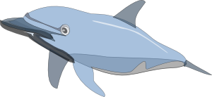 Dolphin 2 Clipart png free, Dolphin 2 transparent png