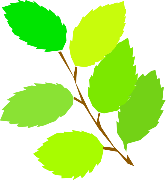 Simple Spring, New Leaves Clipart png free, Simple Spring, New Leaves transparent png