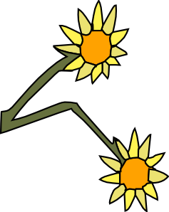 Sun Flowers Clipart png free, Sun Flowers transparent png