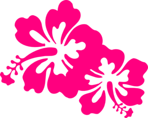 Two Hot Pink Hisbiscus Flower Clipart png free, Two Hot Pink Hisbiscus Flower transparent png