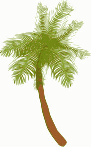 Coconut Tree Clipart png free, Coconut Tree transparent png