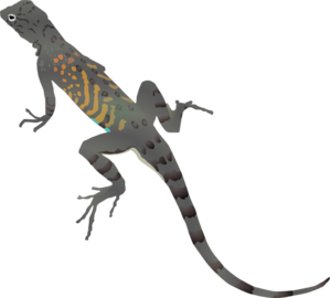 Gray And Orange Striped Lizard Clipart png free, Gray And Orange Striped Lizard transparent png