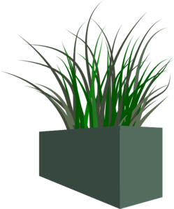 Grass In Square Planter Clipart png free, Grass In Square Planter transparent png