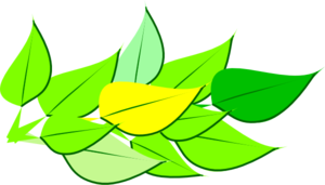 Analogous Leaves Clipart png free, Analogous Leaves transparent png