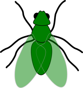 Green Fly Green For Web Clipart png free, Green Fly Green For Web transparent png