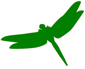 Green Dragonfly Clipart png free, Green Dragonfly transparent png