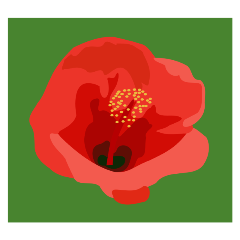 Hibiscus Clipart png free, Hibiscus transparent png