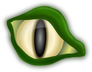 Lizard Eye Clipart png free, Lizard Eye transparent png