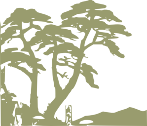 Rainforest Clipart png free, Rainforest transparent png