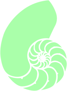 Green Nautilus Shell Clipart png free, Green Nautilus Shell transparent png