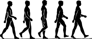 Walking Person Silhouette Clipart png free, Walking Person Silhouette transparent png