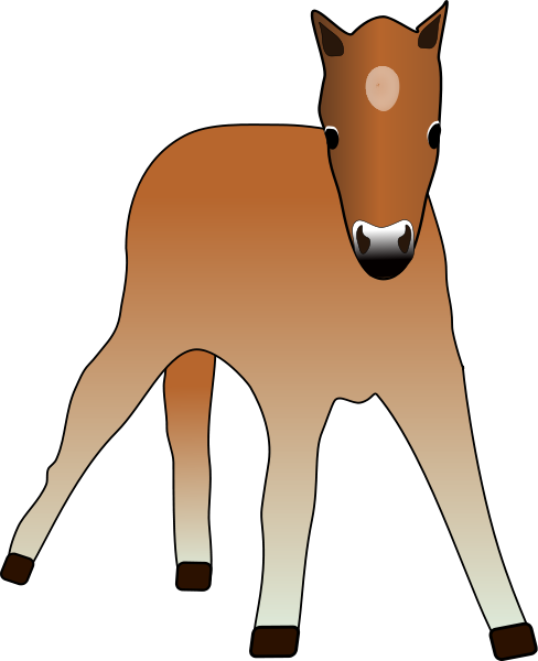 Young Foal Clipart png free, Young Foal transparent png