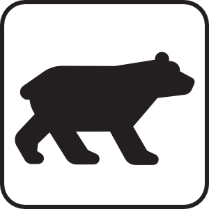 Bear Viewing White Clipart png free, Bear Viewing White transparent png