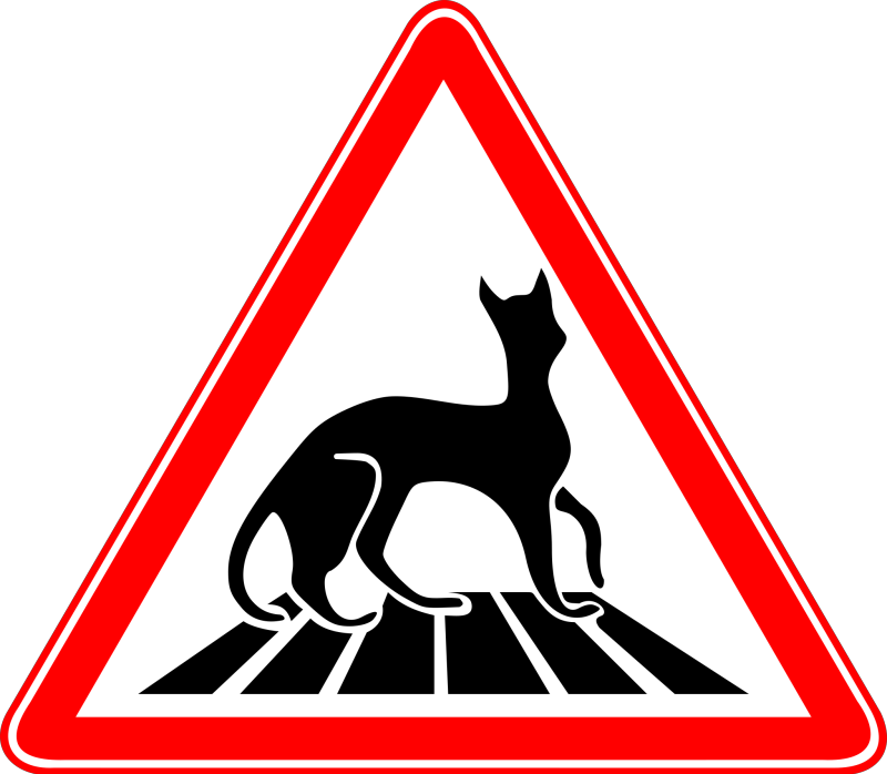 Carefully Cats! Clipart png free, Carefully Cats! transparent png