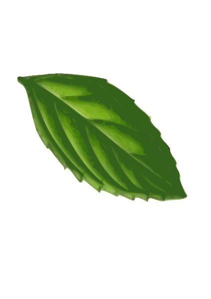 Mint Leaf( Traced) Clipart png free, Mint Leaf( Traced) transparent png
