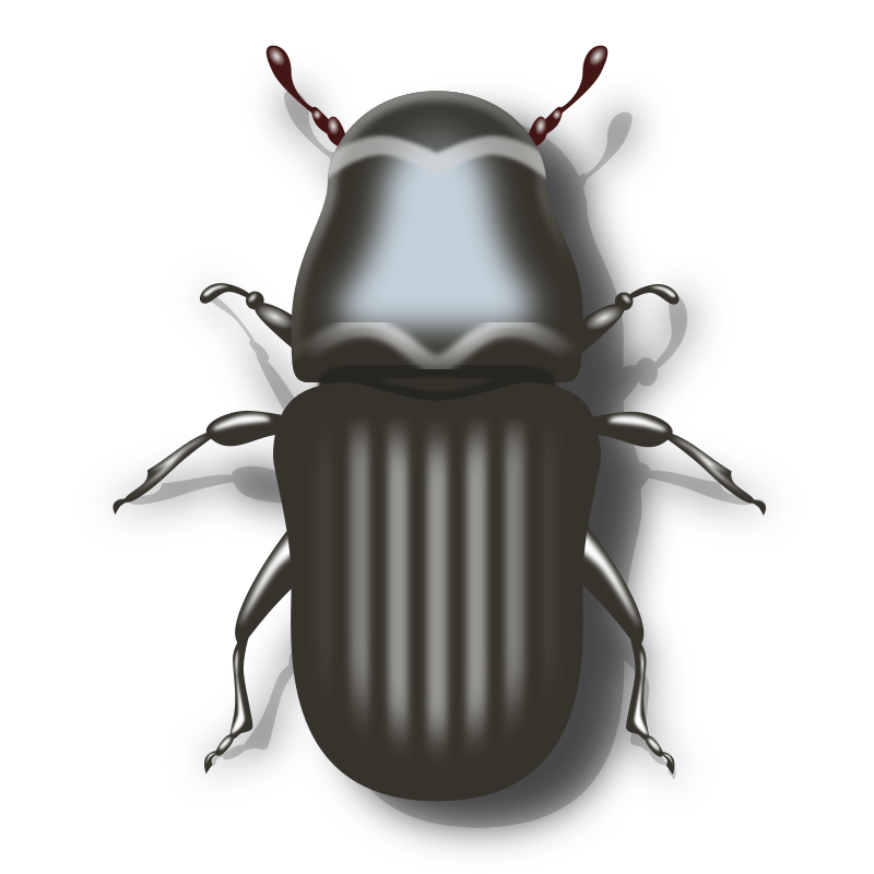 Pine Beetle Clipart png free, Pine Beetle transparent png