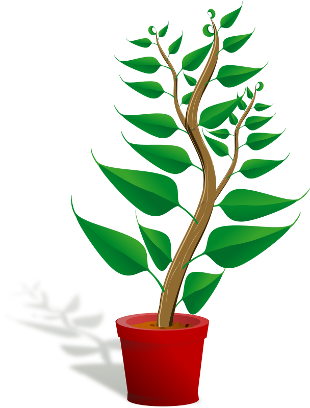 Green Tall Plant In Its Pot Clipart png free, Green Tall Plant In Its Pot transparent png