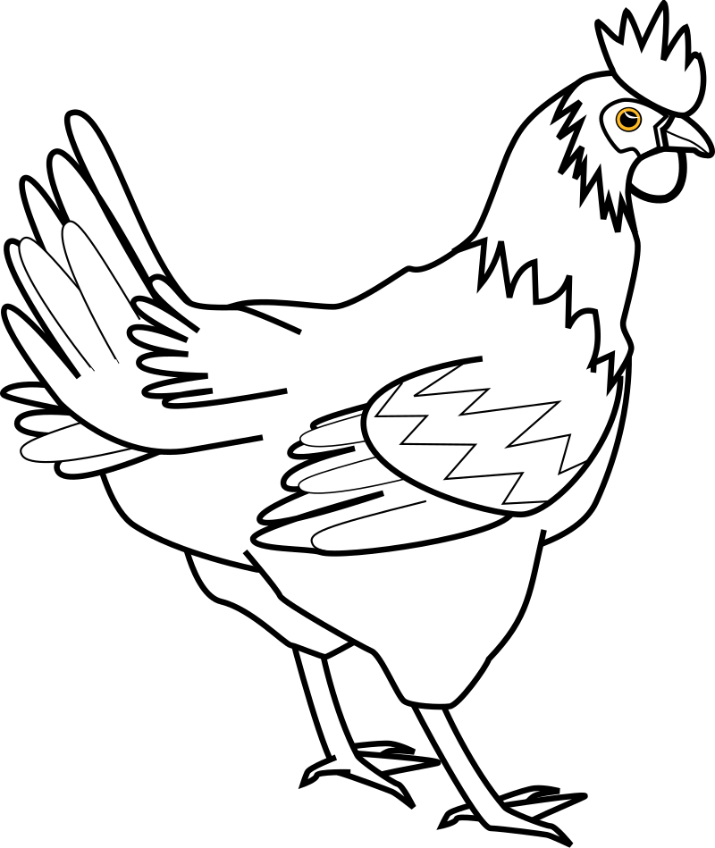 Chicken Line Art Davidone Chicken Clipart png free, Chicken Line Art Davidone Chicken transparent png