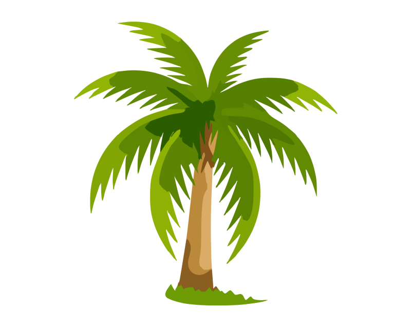 Palm Tree Clipart png free, Palm Tree transparent png