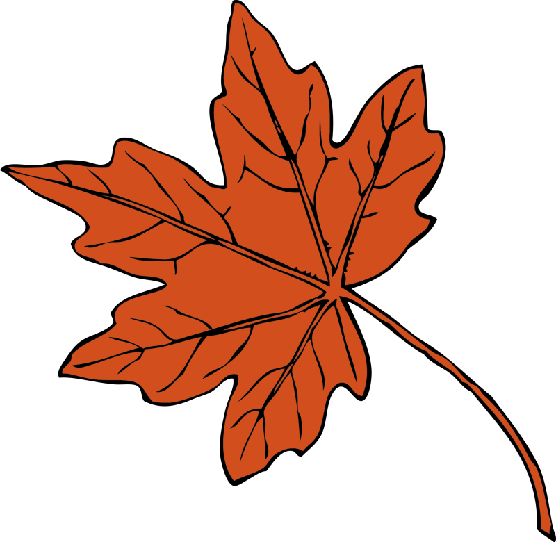 Maple Leaf Clipart png free, Maple Leaf transparent png