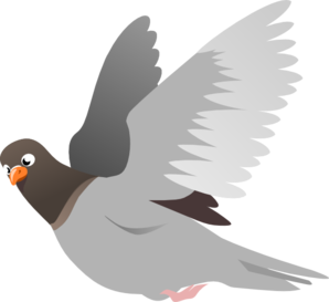 A Flying Pigeon Clipart png free, A Flying Pigeon transparent png