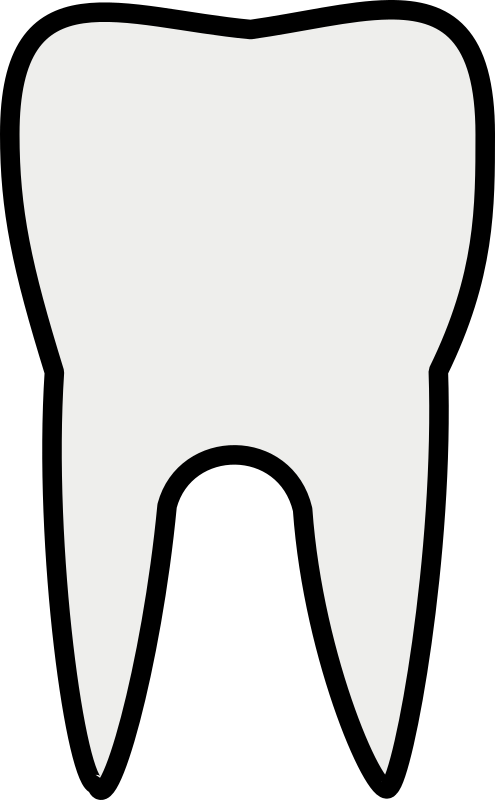 Tooth Line Art Clipart png free, Tooth Line Art transparent png