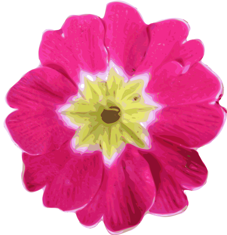 Flower-11 Clipart png free, Flower-11 transparent png